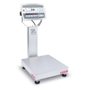 Washdown portable and floor scales